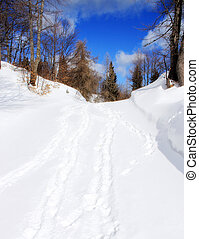 Snow walley