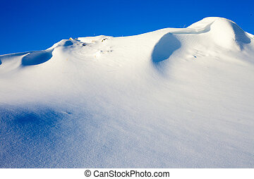 Snow Wilderness Scene