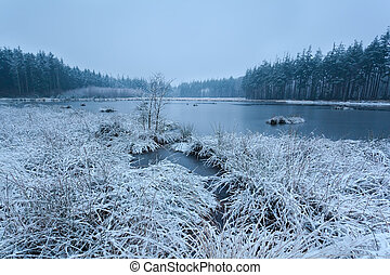 snow winter morning on lake