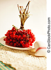 Snowball red berries on the plate among other autumn fruits