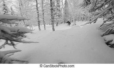 snowboard, freeriding, poudre, jour