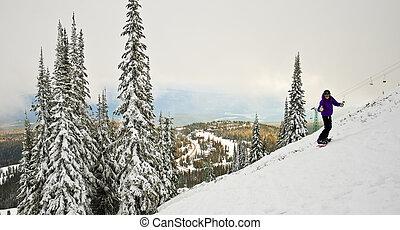 snowboarder, ligado, terreno montanha, em, bc, canadá