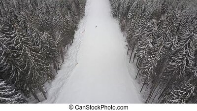 Snowboarder on the black track in mountains on the snow...