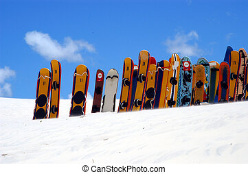 Snowboards lined up - Sandboarding on the dunes