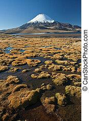 Snowcap Parinacota  - Parinacota volcano at Lauca park