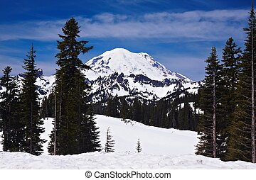 Snowcapped Mount Rainier National Park, Oregon, United States