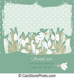 snowdrop, カード, 春の花, 花