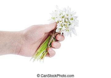 snowdrop bouquet hold hand