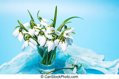 Snowdrop flowers in a vase on blue background