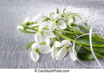 Snowdrops bouquet on shiny silver background