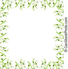 snowdrops, quadro, flores, fundo branco