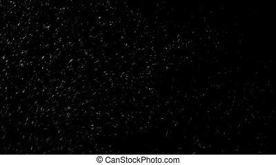 Snowfall, Beautiful white snowflakes swirl in the wind and fall down, snow flakes on a black background