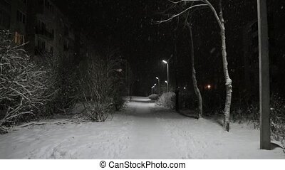snowfall in a night park