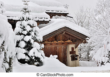 snowfall in a village