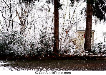 Snowfall in the backyard