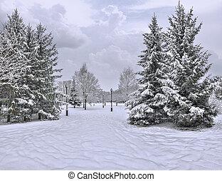 Snowfall in the city park - beautiful urban winter landscape