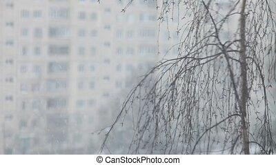 city, winter landscape