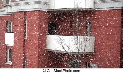 Snowfall, large snowflakes