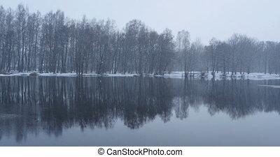 snowfall winter landscape