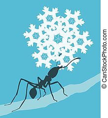 Snowflake ant