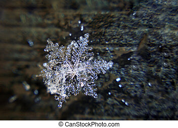 Snowflake at the black background