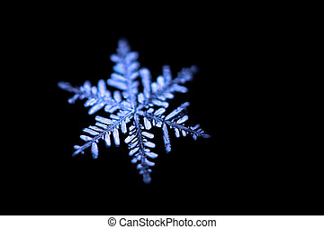 Snowflake closeup