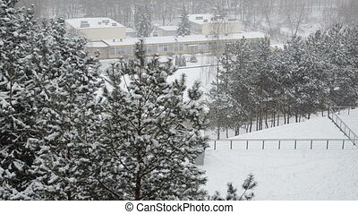 snowflake dance panorama