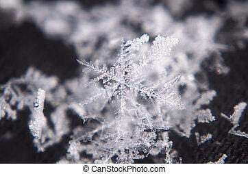 Snowflake white shiny star