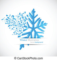 Snowflake with debris