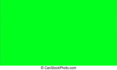 Snowflakes isolated on green screen