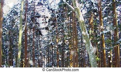 snowing, япония, лес, зима