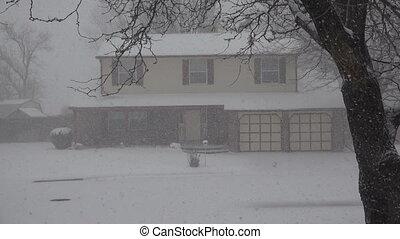 Snowing Hard on House Thru The Tree - Closeup of a suburban...