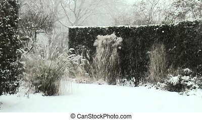 Snowing in the garden in Holland