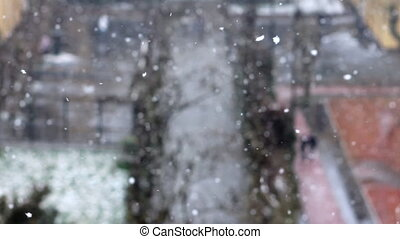 snowing in winter at park 2