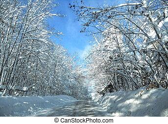 snowing on street in winter
