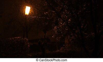 Snowing On Warm Street Light - Abundent precipitation, in...