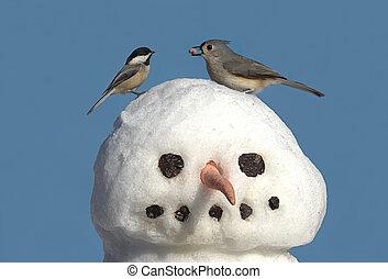 snowman, dos pájaros