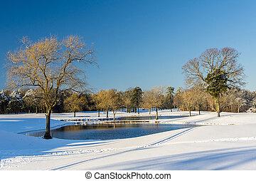 Snowscape  - Snow covered landscape