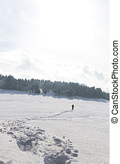snowshoe tracks and man in the background