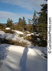 snowshoeing, in, uno, wonderland inverno