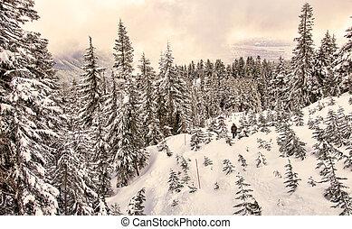 Snowshoeing landscape near Vancouver Canada
