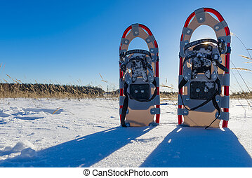 snowshoes cast a shadow on the fresh snow
