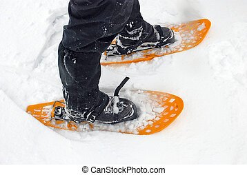 snowshoes in the snow - Two yellow snowshoes in the snow