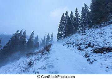 snowstorm., הרים, חורף
