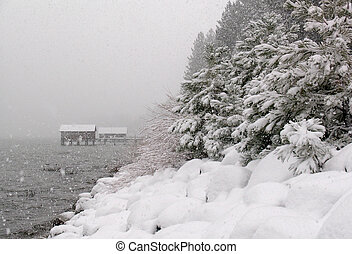 Snowstorm at Lake Tahoe - Snow-covered beach of Lake Tahoe...