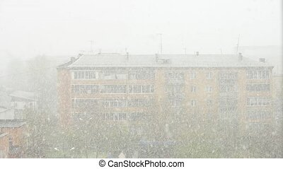 Snowstorm in the town in spring time.