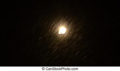 Snowstorm visible in night park lantern lights