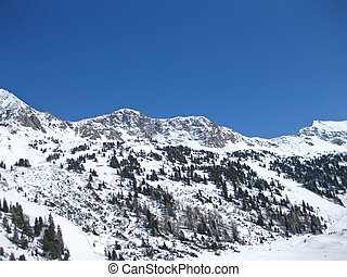 snowy alps in the swiss mountains on a beautiful sunny winter day