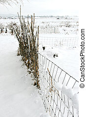 Snowy Bamboo Fence