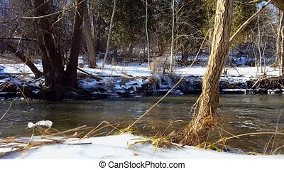 Snowy Bank River in Winter. Cold Water Flowing With Riverside Snow Surrounded By Beautiful Forest.